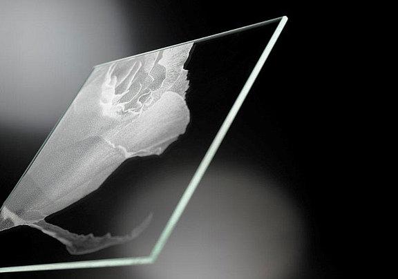 Foto als Lasermattierung